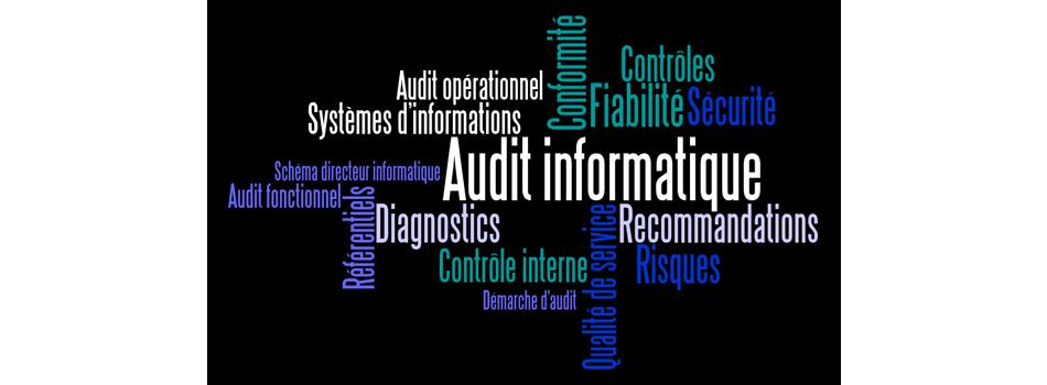 Réalisation de missions d'Audit et de Conseil informatique