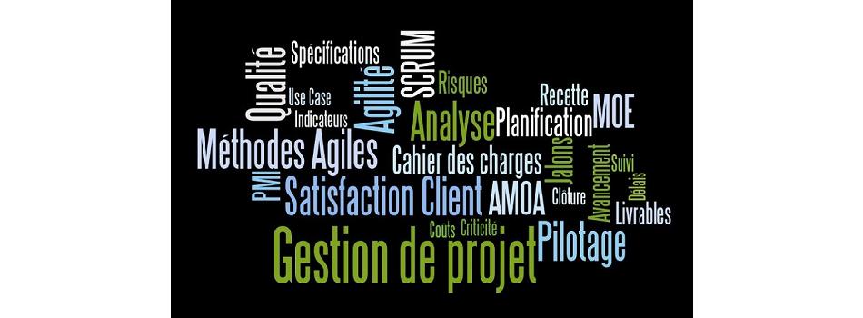 Management de projet (AMOA / MOE)